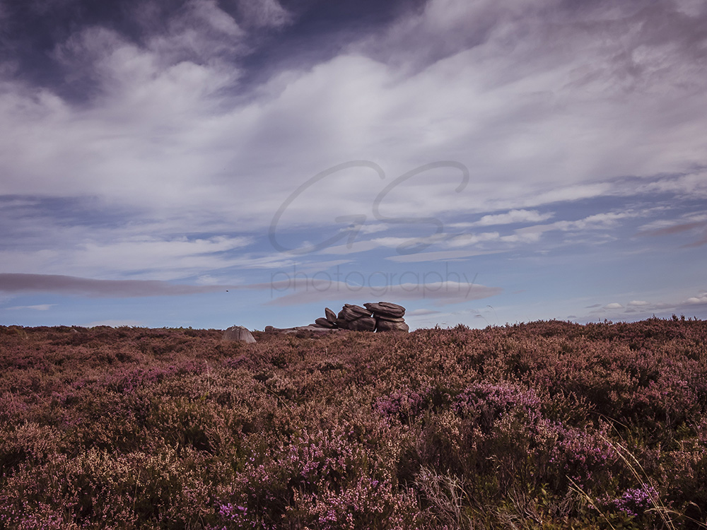 A day out at Higger Tor